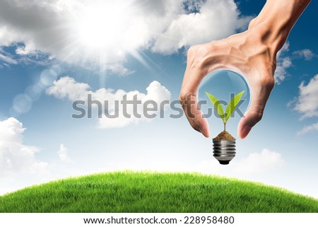 Green energy concept - sprout tree growing in bulb and grass field with bulb shaped hand on blue sky and cloud background - stock photo