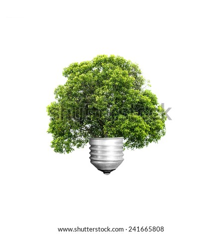 green energy eco concept, tree growing out of bulb,Trees isolated on white background - stock photo