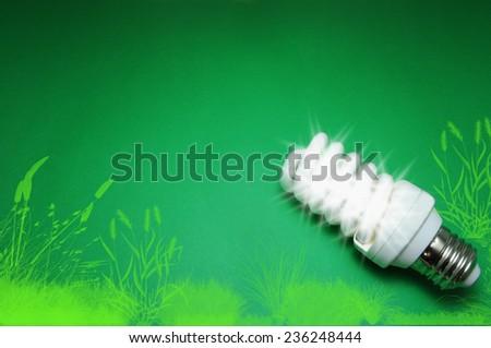 Green Energy Saving Light Bulb - stock photo