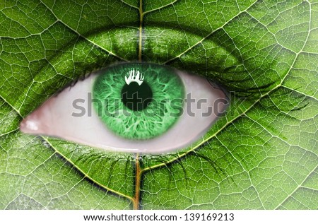 Green eye close up and leaf texture on face. Ecology concept