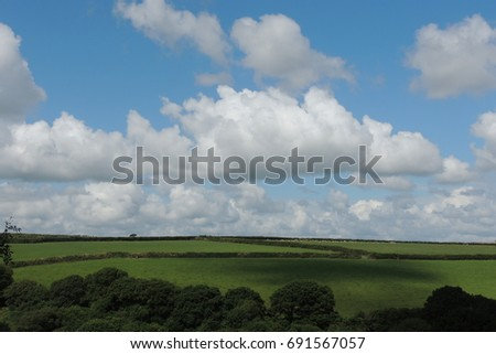 Green farm fields in Cornwall, with sheep and cows under a blue sky and fluffy white clouds