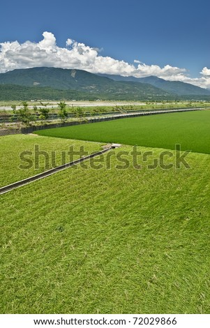 Green farm under blue sky in countryside. - stock photo