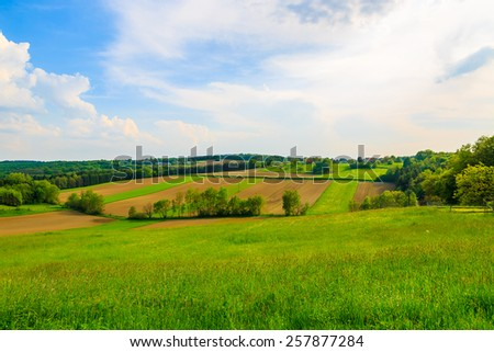 Green farming fields in countryside spring landscape, Burgenland, Austria - stock photo