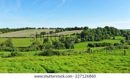 Green Farmland Fields - stock photo