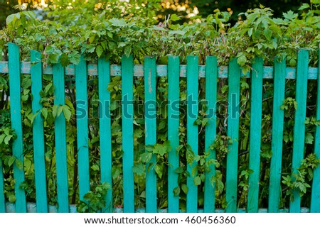 green fence and the leaves