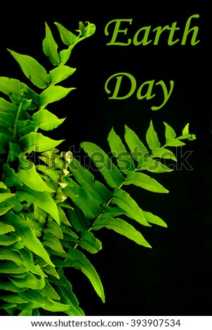 Green fern fronds on black background with text message as image for Earth Day on April 22 - stock photo
