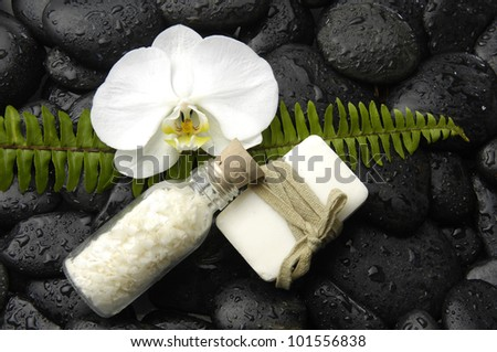 Green fern leaf with flower and salt in glass and soap on pebble