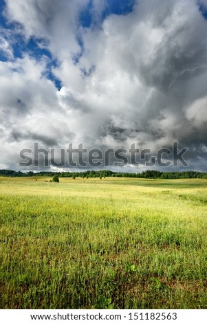 Green field against blue sky and clouds