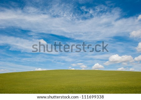 green field and blue cloudy sky background
