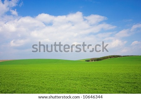 green field and blue sky 14.