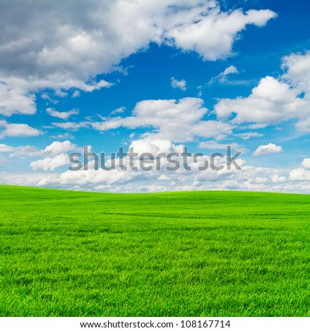 Green field and blue sky background - stock photo
