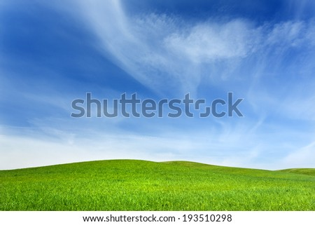 Green Field and blue sky in north Poland/Green Fields - stock photo