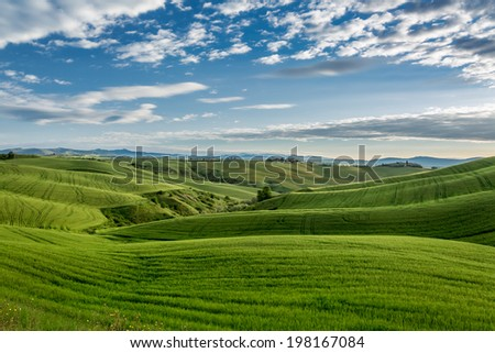 Green field and blue sky in Tuscany - stock photo