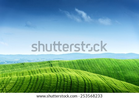 Green field and blue sky. Italy, Tuscany