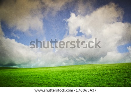 Green field and blue sky landscape for background
