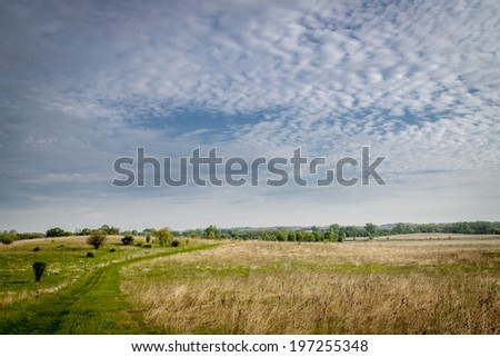 Green field and blue sky on a spring day - stock photo