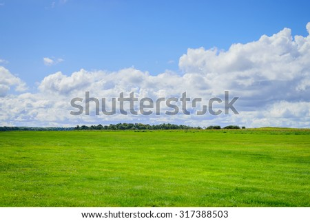 Green field and blue sky with cloud background