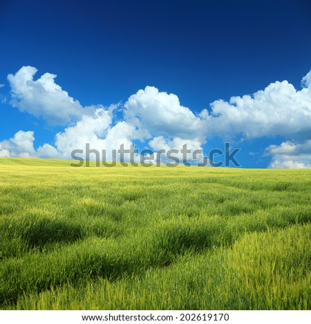 Green field and blue sky with light clouds in square frame - stock photo