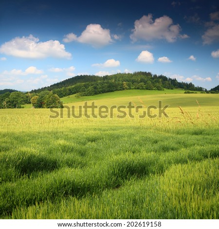Green field and blue sky with scenic hill in the background - stock photo