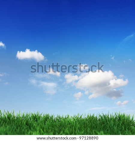 Green field and blue sky with white clouds - stock photo