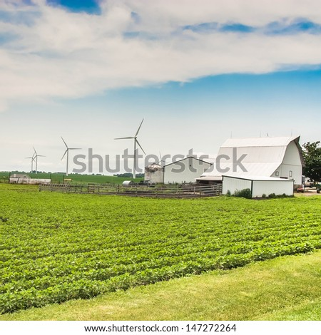 Green field and clean energy concept. Village country farm with poultry house, wind farm and corn and alphalpha crops. - stock photo