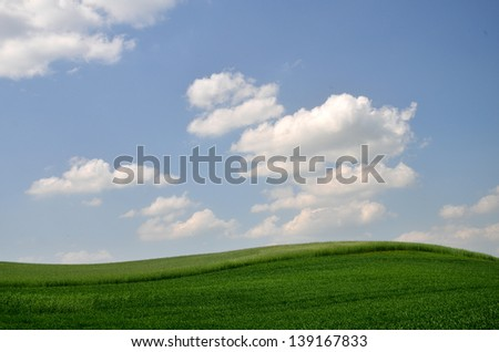 green field and clouds in the sky