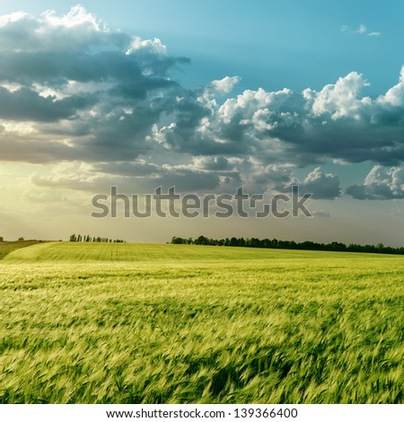 green field and clouds over it in sunset - stock photo