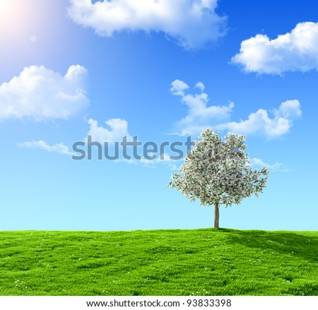 green field and flowering tree on a background of the blue sky - stock photo