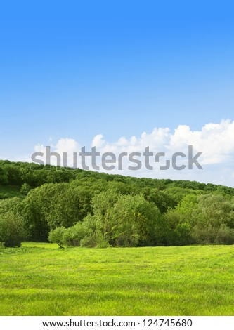 Green field and forest on background of the sky. Summer landscape - stock photo