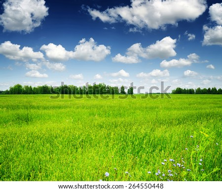 Green field and forest under the blue sky with white clouds. Beautiful summer landscape. - stock photo