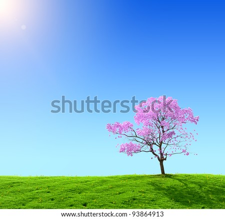 green field and pink tree on a background of the blue sky - stock photo