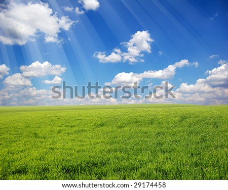 Green field and sky 3