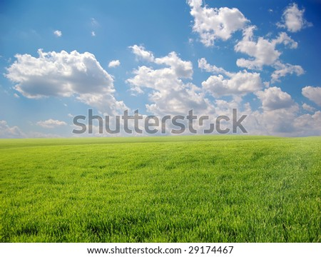 Green field and sky 2