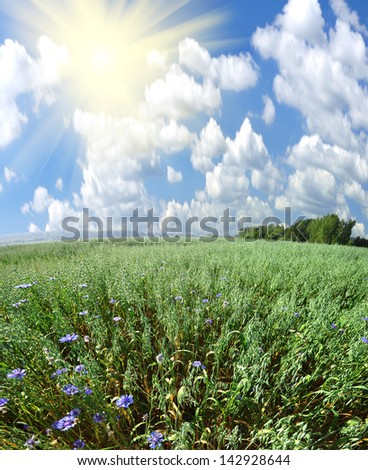 green field and sun under sky big resolution - stock photo