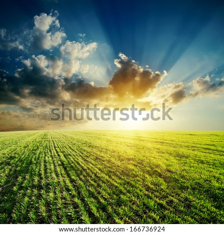 green field and sunset in cloudy sky - stock photo