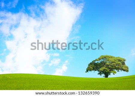 Green field and tree on clear blue sky - stock photo