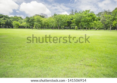 Green field and tree with blue sky - stock photo