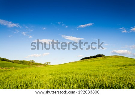 Green field background.
