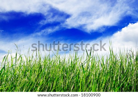 green field, blue sky, white clouds
