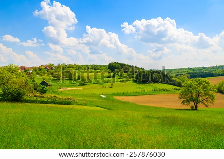 Green field in countryside spring landscape, Burgenland, Austria - stock photo