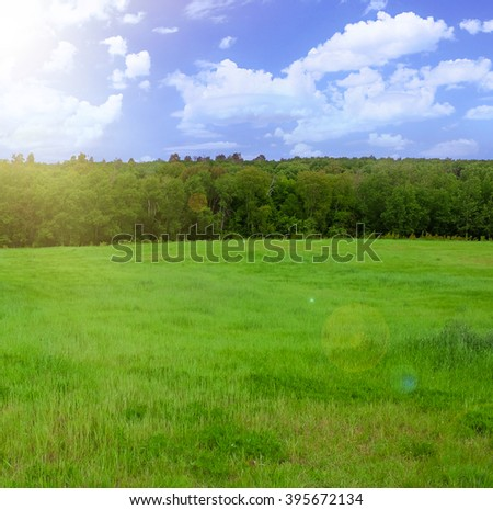 Green field, trees and blue sky - stock photo