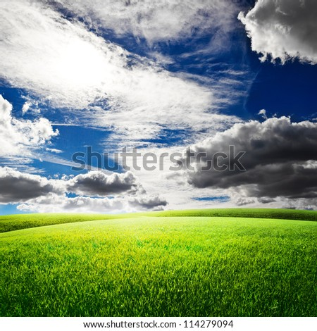Green field under blue sky. Beauty nature background - stock photo