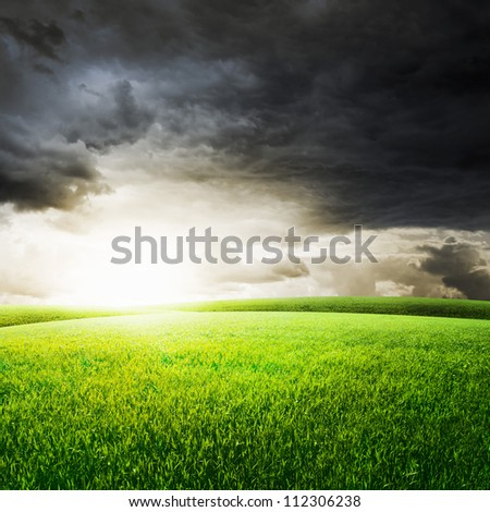 Green field under sunset sky. Beauty nature background
