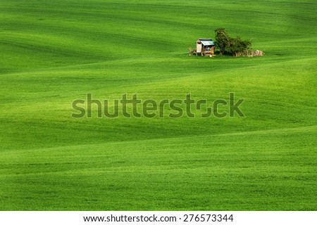 Green field waves with hut, South Moravia, Czech Republic - stock photo