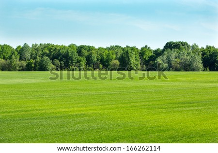 Green field with a lawn grass, trees and sky on a horizon  - stock photo