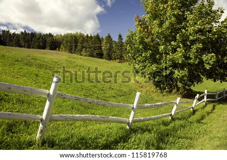 Green field with a white fence on a sunny day - stock photo