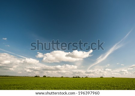 Green field with beautiful blue sky and elephant shape clouds - stock photo