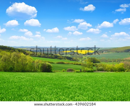 Green field with blue sky. Spring landscape. - stock photo