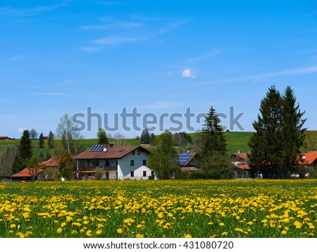 Green Field with Clear Blue Sky in Austria