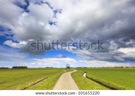 Green field with road in summer - stock photo